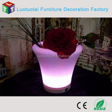 Garden Decoration Beautiful Glowing LED Flower Pot, LED Planters