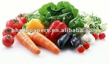 115g high glossy inkjet photo paper with best quality