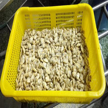 frozen baby clam meat produced by excellent factory