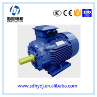 Haiyu China manufacture strong power Y YE2 YX3 3 phase electric motor