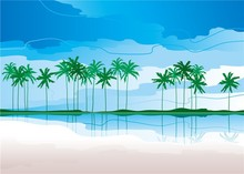 summer beach and coconut beautiful photo wall decor for kids room/wallpaper for children