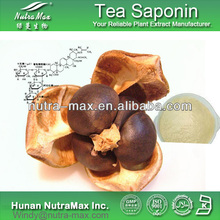 Natural Tea Saponin 50%-95% Saponin, CAS No.8047-15-2