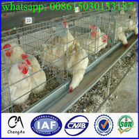 3 Floor Chicken Cage/chicken Coop/cheap Chicken Coops