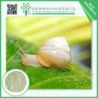 Gold Supplier China herbal extract / natural cosmetic ingredient snail extract