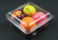 China Vegetable frozen blister tray High quality clear disposable plastic food plate Fruit tray