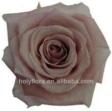Best weddding gift for guests china cheap Preserved rose head many colors