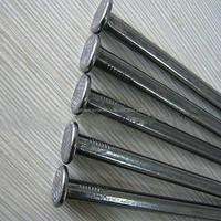 galvanized twisted nails/common nail iron nail made in China