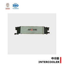 Water to air intercooler for Ford OE 5S6H9L440AD (DL-E077)