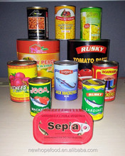 high quality and best canned food factories