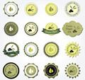 etiqueta de los alimentos para etiqueta de aceite de oliva