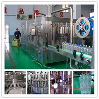 Auto Ro bottled water equipment for sale