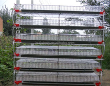 best selling good price quail laying cage/bird cage materials HJ-QC600
