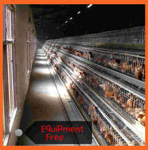 Types Of Layer Chicken Cages In Zimbabwe Poultry Farm For Sale