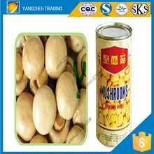 Fresh vegetable of canned mushrooms in brine mushroom price