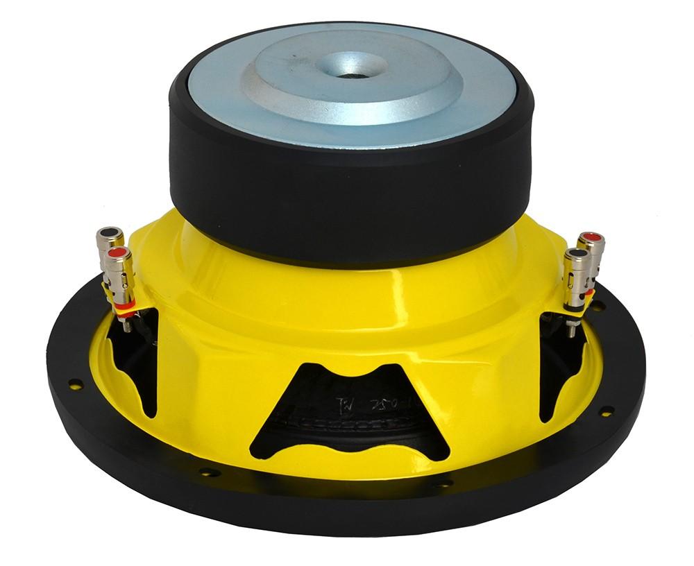 subwoofer motor magnet 12.JPG