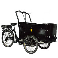 family electric three wheel bike with electric motor