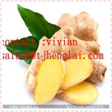 buy fresh ginger in china on alibaba /ginger price