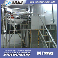 New Design Ultra-Low Temperatur Freezer WIth Great Price