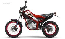 YHM TRICKER MOTORCYCLE 250CC dirt bike, 250cc dirt motocicletas