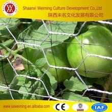 Chicken Wire Cheap, Chicken Wire Fence Home Depot, Chicken Wire Fencing Panels