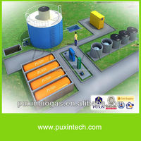 biogas digester with sewage pump for University and slaughter house sewage treatment