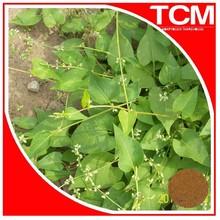 Natural Black Hair Tuber Fleeceflower Root Extract Powder/Polygonum multiflorum Thunb 10:1