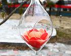 Limpar bola de vidro terrarium pendurado cristal vaso de flor