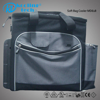 Electric cooler box freezer wine cooler 12V bottle insulated lunch Cooler bag