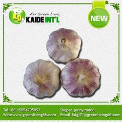 2015 garlic/normal white garlic/pure white garlic with cheap price