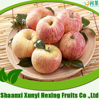 red apple fruits containing vitamin d/fresh apple