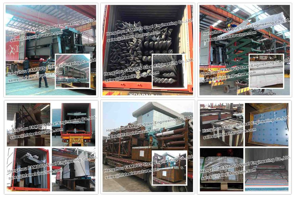 Pre Engineered Steel Structural Framing Systems With Roof
