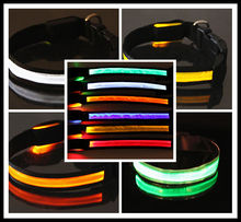 Waterproof LED Light up Necklace Pet Flashing Collar