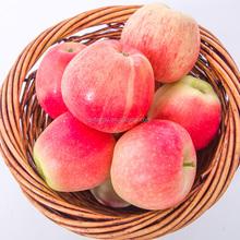 2015 New Crop fresh Gala Apple, sweet red Gala Apple Fruit shaanxi China