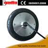 /product-gs/8-inch-brushless-rear-wheel-brushless-electric-bicycle-motor-60312217011.html