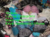 Top quality fashion bras bales