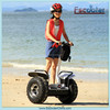 Electric Chariot Balance Scooter Off Road Self Balance Scooters 2000w