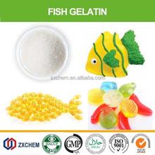 edible fish gelatin powder from fish skin/scale