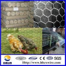 Anping galvanized hexagonal wire mesh/ chicken wire / PVC coated chicken fence