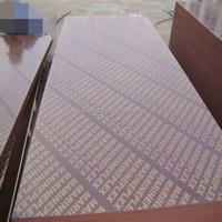 marine plywood film faced plywood for Qatar Doha market