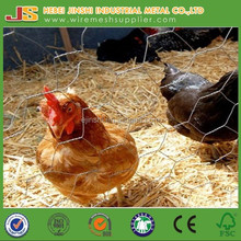 1'' Hot-dipped galvanized & electro galvanized poultry wire mesh & chicken wire & hexagonal wire mesh for poultry