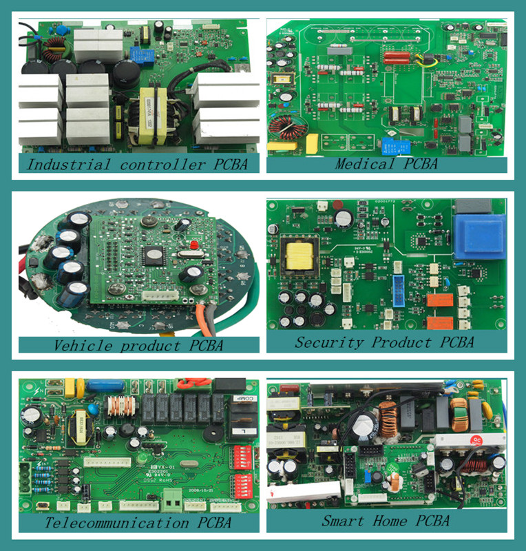 pcb 3063 study guide Study approaches: genetics is a class where understanding is much more important than memorization however, there is an enormous number of new words and facts that must be mastered before problems can be solved.