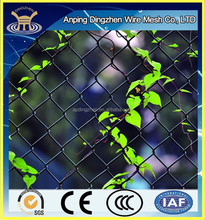 Chain Link fencing Exporting to USA Professional Manufacturer