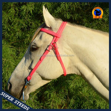 Horse equipment horse racing bridle