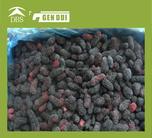 100% pure natural Frozen Mulberry