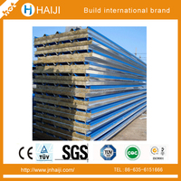 Top quality composite sandwich panel for modular house or container home