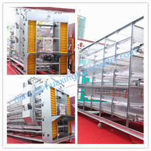 China cheap broiler chick cage for sale/ breeds of broiler chickens