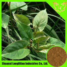 Hair Care Products- Polygonum Multiflorum Extract
