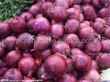 6-9cm red onion 20kg carton China onion