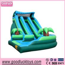 Outdoor giant inflatable trampoline sliding, backyard amusement dual lane water slide