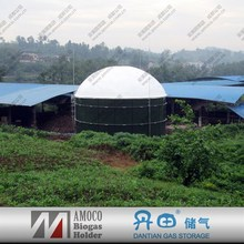2015 China food waste disposer biogas digester